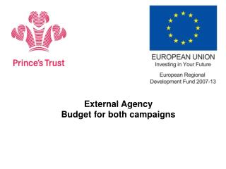 External Agency  Budget for both campaigns