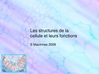 Les structures de la cellule et leurs fonctions