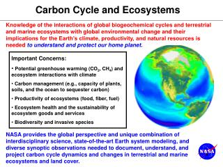 Carbon Cycle and Ecosystems