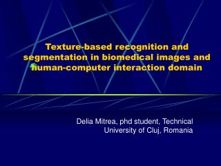 Delia Mitrea, phd student, Technical University of Cluj, Romania