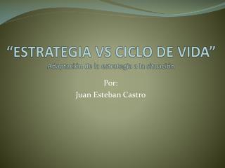 """""""ESTRATEGIA VS CICLO DE VIDA"""" Adaptación de la estrategia a la situación"""