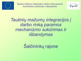 Tautinių mažumų integracijos į darbo rinką paramos mechanizmo sukūrimas ir išbandymas
