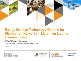 Energy Storage Technology Options for Distribution Networks � More than just the economic cost