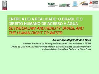 Alexandre Magrineli dos Reis Analista Ambiental da Fundação Estadual do Meio Ambiente – FEAM