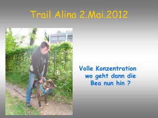 Trail Alina 2.Mai.2012