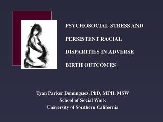 Tyan Parker Dominguez, PhD, MPH, MSW School of Social Work University of Southern California