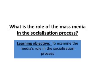 What is the role of the mass media in the socialisation process?
