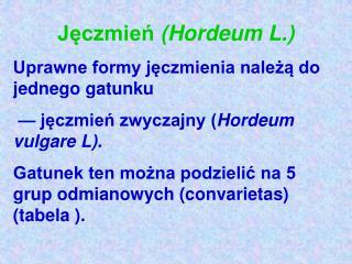Jęczmień  (Hordeum L.)