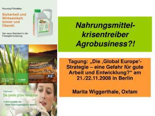 Nahrungsmittel-  krisentreiber Agrobusiness?!