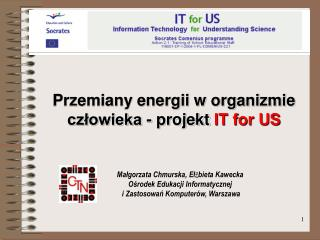 Przemiany energii w organizmie  cz?owieka - projekt  IT for US