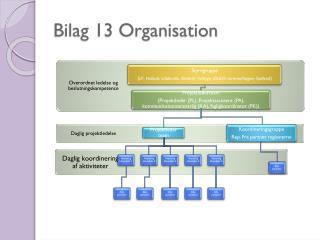 Bilag 13 Organisation