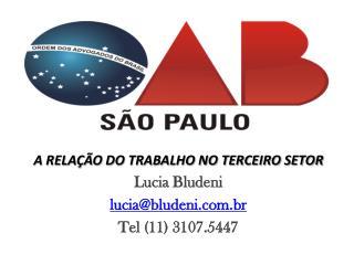 A RELAÇÃO DO TRABALHO NO TERCEIRO SETOR Lucia  Bludeni lucia@bludeni.br Tel  (11) 3107.5447