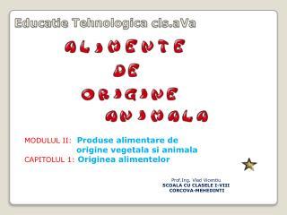 Educatie Tehnologica cls.aVa