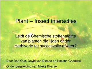 Plant   Insect interacties
