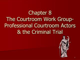 Chapter 8 The Courtroom Work Group-Professional Courtroom Actors   the Criminal Trial