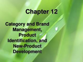 Category and Brand Management, Product Identification, and New-Product Development
