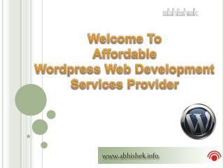 Professional Wordpress Website Developer India