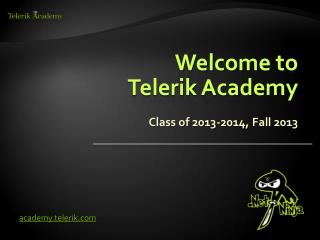 Welcome to  Telerik Academy