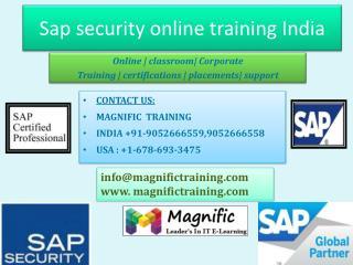 sap security online training in uk