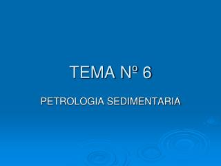TEMA Nº 6
