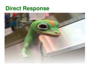 Direct Response