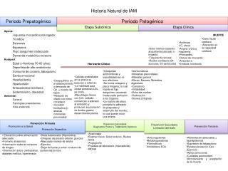 Historia Natural de IAM