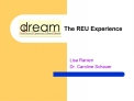 The REU Experience