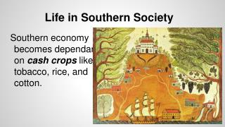 Life in Southern Society