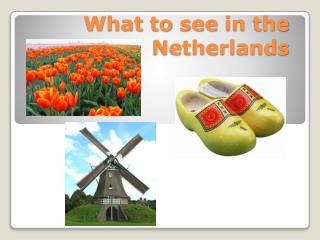 What to see  in the Netherlands