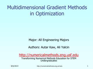 Multidimensional Gradient Methods in Optimization