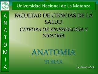 FACULTAD DE CIENCIAS DE LA SALUD CATEDRA DE KINESIOLOGÍA Y FISIATRÍA ANATOMIA TORAX