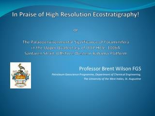 Professor Brent Wilson FGS Petroleum Geoscience Programme, Department of Chemical Engineering,