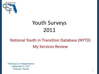 Youth Surveys 2011
