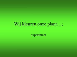 Wij kleuren onze plant…;