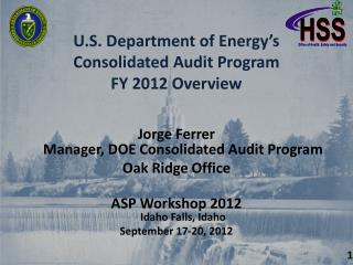 U.S. Department of Energy's Consolidated Audit Program FY 2012 Overview