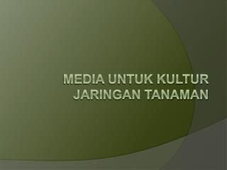 Media untuk Kultur Jaringan Tanaman