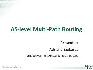 AS-level Multi-Path Routing
