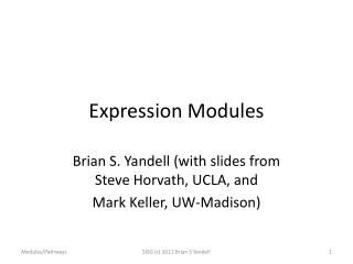Expression Modules