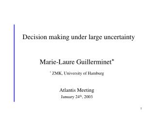 Decision making under large uncertainty