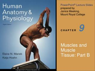 Muscles and Muscle Tissue: Part B
