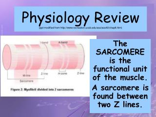 Physiology Review (ppt modified from recreation.ucsb/ess/ess40/chap8.htm)