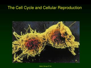 The Cell Cycle and Cellular Reproduction