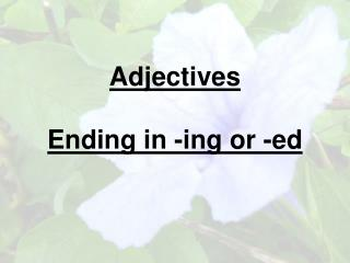 Adjectives  Ending in -ing or -ed