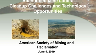 Office of Superfund Remediation and Technology Innovation Perspective
