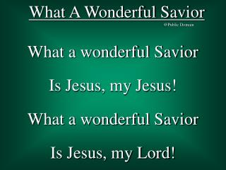 What A Wonderful Savior