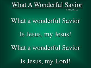What A Wonderful Savior