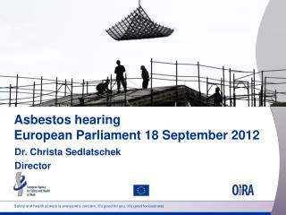 Asbestos hearing  European Parliament 18  September 2012