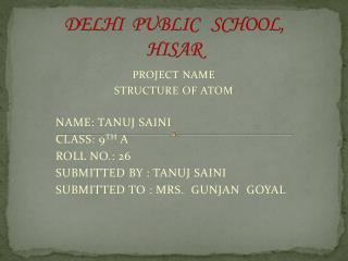 DELHI  PUBLIC   SCHOOL, HISAR