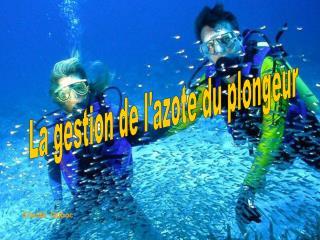 La gestion de l'azote du plongeur