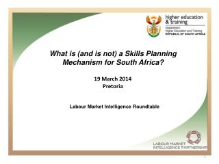 What is (and is not) a Skills Planning Mechanism for South Africa? 19 March 2014 Pretoria